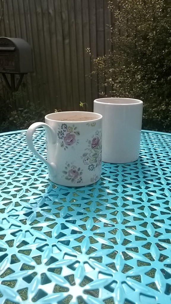 It was warm enough yesterday for the first cuppa out in the garden