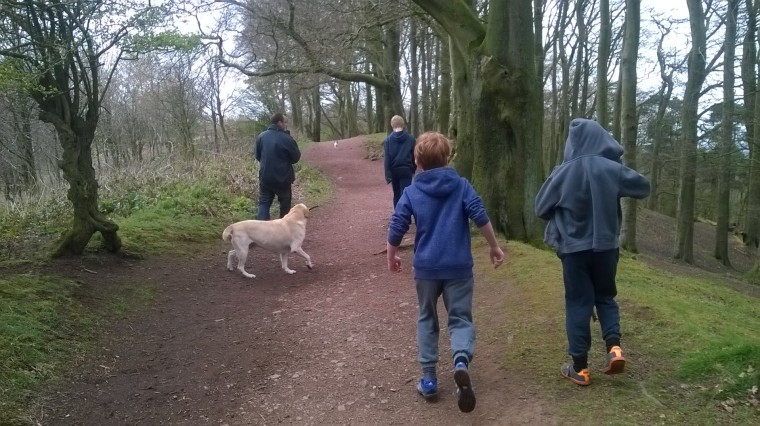 starting the climb to bluebell wood