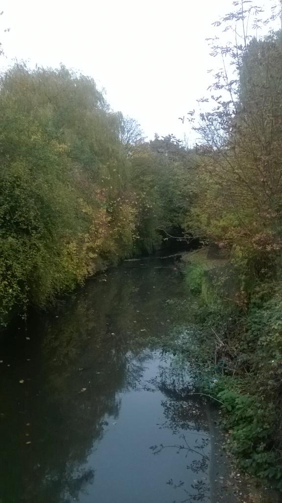 An Autumnul walk
