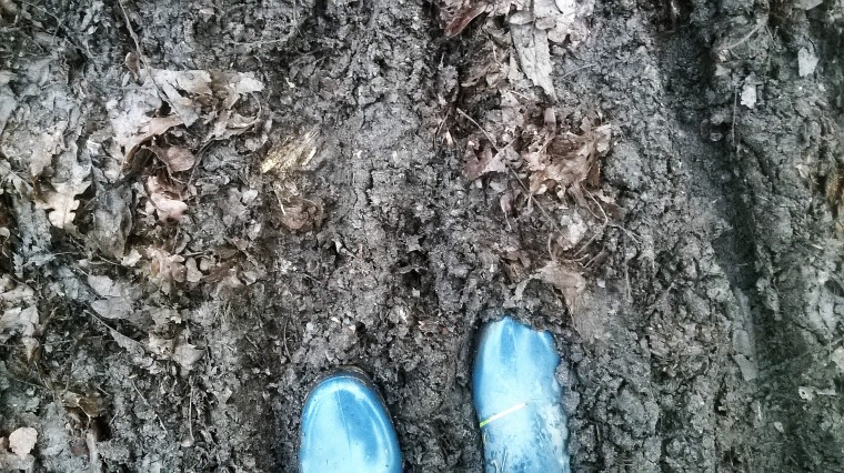 Wellies are my favourite type of footwear!