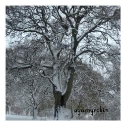 a snowy tree