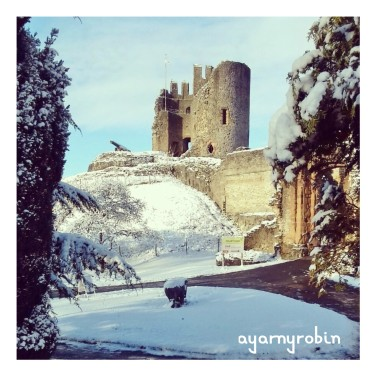 Dudley Castle in the snow